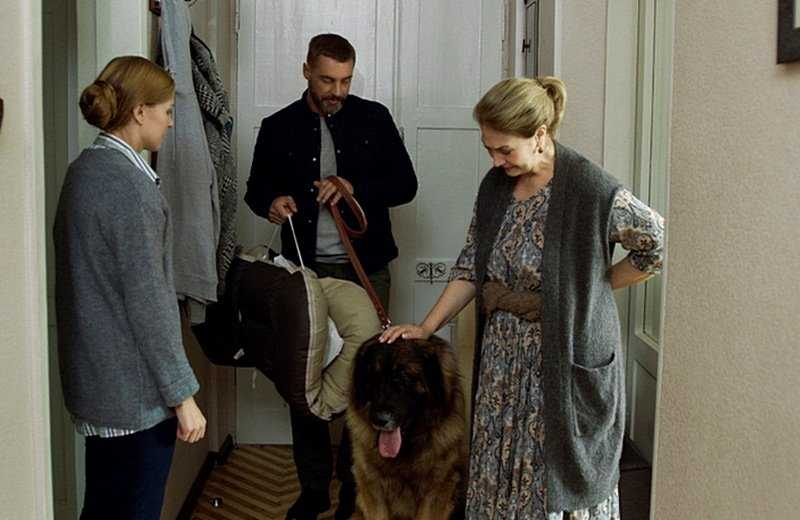 Watch Ukrainian film Year of the Dog 2018 online melodrama all series in a row for free hd 720